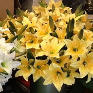Single Stem Yellow Lillies