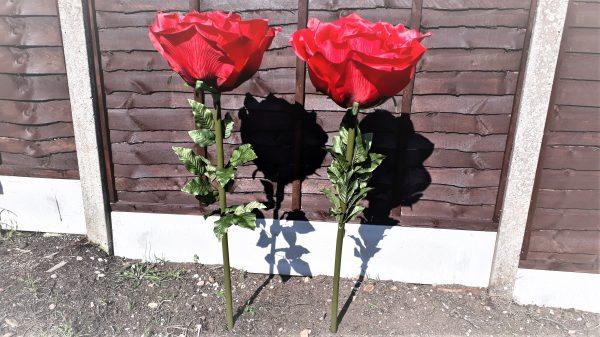 XL Giant Single Stem Red Rose