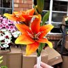 Artificial 66cm Lily Spray, 2 Heads 1 Bud, Orange, Ideal for Christmas, Weddings, Graves & Home, Min Order on this Item
